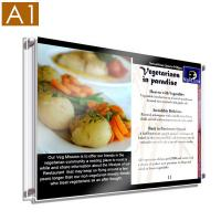 Buy cheap Single A1 Landscape Wall Mounted Poster Holder from wholesalers