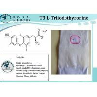 Buy cheap Healthy Effective Raw Hormone White Powder L-Triiodothyronine T3 For Weight Loss from wholesalers