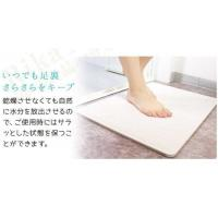 Buy cheap Rapid Water Absorption Diatomite Bath Mat Instant Drying Waterproof Eco Friendly from wholesalers