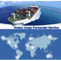 Buy cheap FCL /LCL Shipping Services from China to SANTO DOMINGO,Dominica from wholesalers