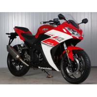 Double Cylinder Engine 350cc Sport Touring Motorcycles Front / Rear Double Dics