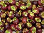 Buy cheap Mangosteen Extract from wholesalers