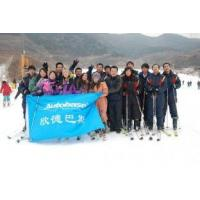 Buy cheap Autobase ski field in 2010 from wholesalers