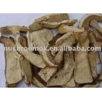 Buy cheap Boletus edulis slice from wholesalers