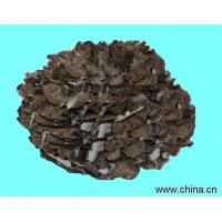 Buy cheap Maitake mushroom powder from wholesalers