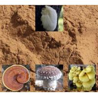 Buy cheap Products-Mushroom Powder from wholesalers