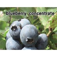 Concentrate Blueberry Concentrate