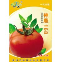 Buy cheap Holy Deer168- Tomato Seed from wholesalers