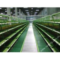 Buy cheap >> Carton flow racking () from wholesalers