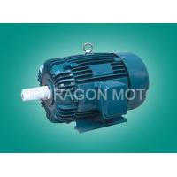 Buy cheap Electric Motors AEEF IEC Standard Three-Phase Induction Motor from wholesalers