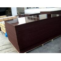 Buy cheap Film Faced Plywood |Film Faced Plywood>>Brown film faced plywood from wholesalers