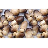 Buy cheap Straw  mushroom in brine from wholesalers