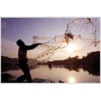 Buy cheap Cast net from wholesalers