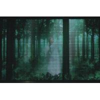 Buy cheap LED PRODUCTS LED color screen mesh screen product