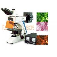 Buy cheap Flourescence Microscope [BK-FL Fluorescent Microscope] from wholesalers