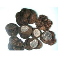 Buy cheap FrozenMushroomSeries Frozen Truffles product
