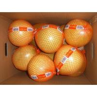 Buy cheap red Pummelo,Pummelo,red Pummelo fruit,red Pummelo fresh from wholesalers