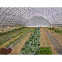Buy cheap Vertical Axis Turbine High Tunnel Greenhouse from wholesalers