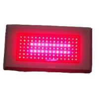 Buy cheap Led Grow light 120W led Grow Light from wholesalers
