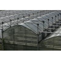 Large-scale High-Low Span Greenhouse
