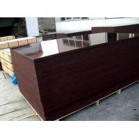 Buy cheap hardwood core 12mm, dynea film faced plywood from wholesalers