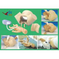 Buy cheap advanced delivery Integrated skills training model, delivery model(simulator,medical model) from wholesalers