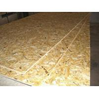 Timber and Plywood OSB