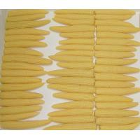 Buy cheap Canned Baby corn product