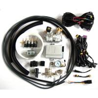 Buy cheap CNG conversion kits(cng sequencial injection system) from wholesalers