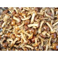 Buy cheap Salted Nameko from wholesalers