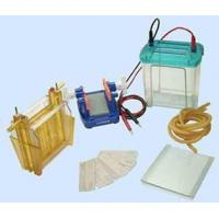 Buy cheap Electrophoresis cell from wholesalers