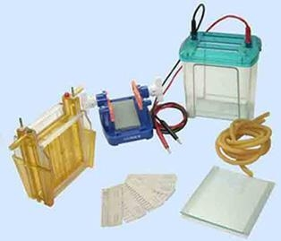 Quality Electrophoresis cell for sale