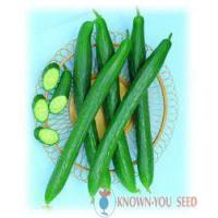 Buy cheap Cucumber from wholesalers