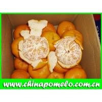 Buy cheap Mandarin Orange from wholesalers