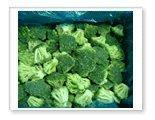 Buy cheap Qinggeng quick-frozen food section Quick-frozen green cauliflower 27 from wholesalers