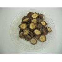 Buy cheap Other dible fungi dried mushroom from wholesalers