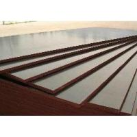 Buy cheap ply-041 Dynea film faced plywood from wholesalers