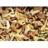 Buy cheap Frozen Mushrooms/ FungiIQF Cantharellus Cibarius from wholesalers
