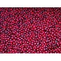 Buy cheap Frozen FruitsIQF lingonberry from wholesalers