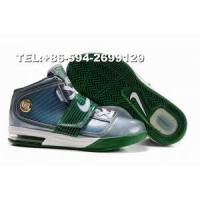 Buy cheap 407701-103 nike zoom soldier IV James basketball shoes(white/blue/green) from wholesalers