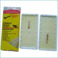Buy cheap rat glue trap #1059 from wholesalers