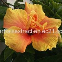 Buy cheap Hibiscus Extract,Hibiscus Sabdariffa,Hibiscus Flower Extract from wholesalers