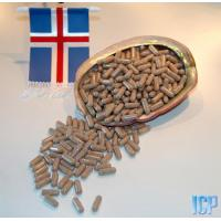 Buy cheap Iceland Sea Cucumber Nutrition Capsules  (Cucumara frondosa) from wholesalers