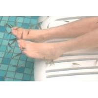 The fish treatment quality the fish treatment for sale for Doctor fish for sale