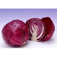 China FRESH VEGETABLESPURPLE CABBAGE on sale