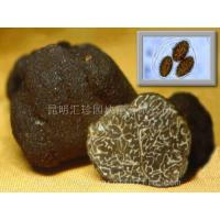 Buy cheap Canned Truffle Tuber Sinense product