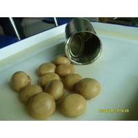Buy cheap Number:9115324016Name:Canned mushroom (whole)Memo:D.W.1500GSpec:2840gX6tinsClass:canned product