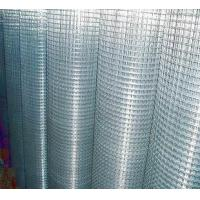 Buy cheap Welded Wire Mesh Galvanized Hardware Cloth from wholesalers