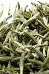 SilverTip white tea