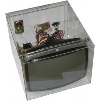 Buy cheap TRANSPARENCY COLOR TV (BT-00) from wholesalers
